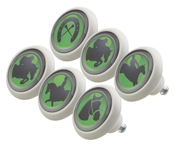 Möbelknopf Set 0033 Tiere Pferde Reiten 6er Kinderzimmer KNOPF KUNST